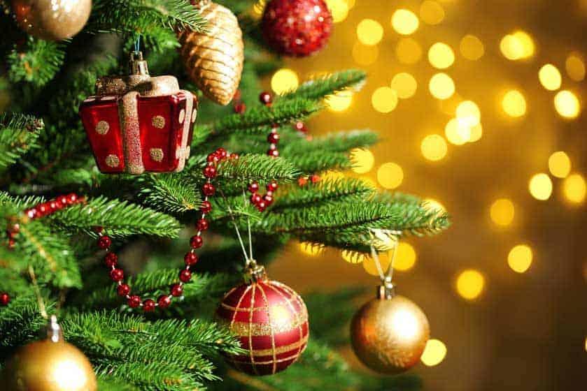origins of the christmas tree by rev dave lillie - The Origin Of The Christmas Tree